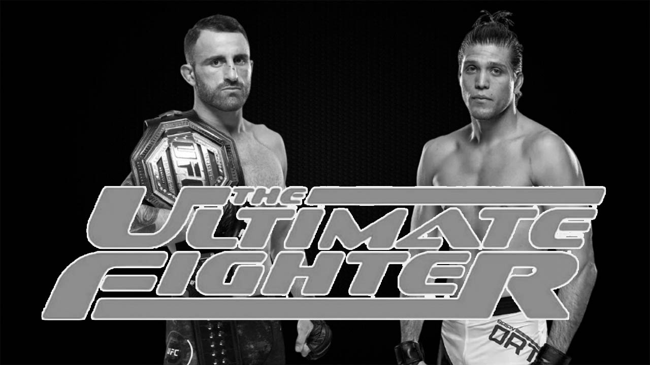 Video Тhe first trailer for Season 29 of The Ultimate Fighter