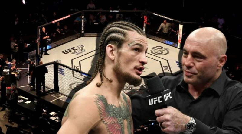 UFC news Sean O'Malley told when and with whom he wants to hold the next fight